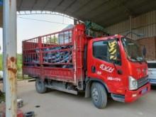 六台碳钢TCA108管链输送机发货